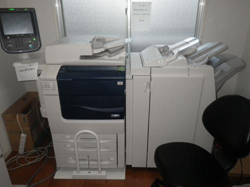 IMGP0630 (500x375)